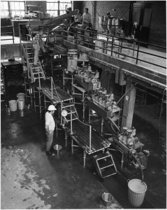 Pilot plant processing of spodumene ore at Mineral Research Laboratory
